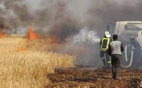 نيويورك تايمز: داعش أحرق محاصيل المزارعين بالعراق لهذا السبب!