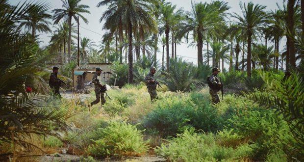 العثور على مضافة لداعش تحوي أسلحة ومؤن غذائية ومتفجرات في الطارمية